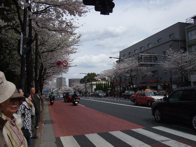 2008_03290010.JPG